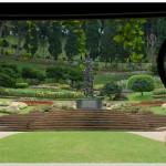 201608 - un jardin en Thailande
